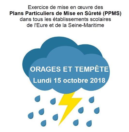 Logo PPMS.jpg